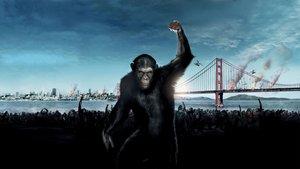 Смотреть фильм «Восстание планеты обезьян» онлайн