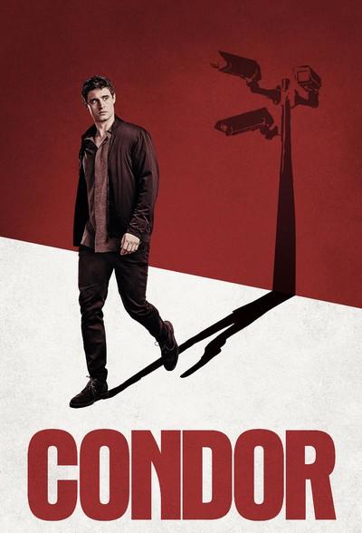 Кондор / Condor