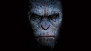 Смотреть фильм «Планета обезьян: Революция» онлайн